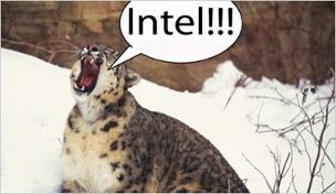 osxcat_roars_for_x86.jpg